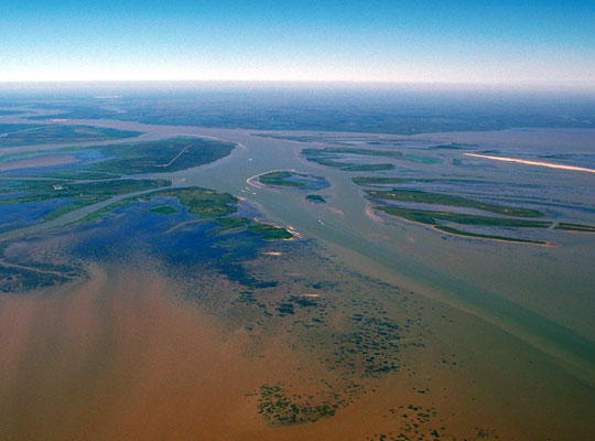 Photograph showing the Atchafalaya River delta