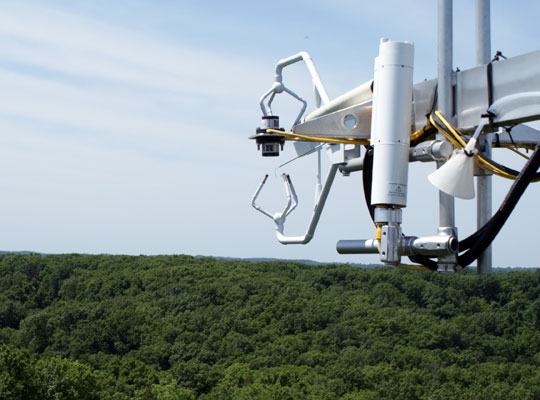 Photograph of fluxtower instruments above the tree canopy