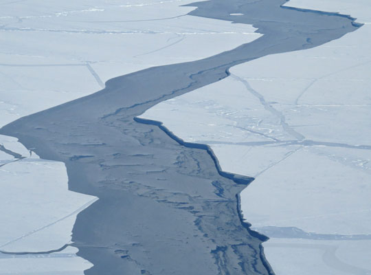 Ice re-grows in a lead between two sea ice floes in the Beaufort Sea, Arctic Ocean, in March 2013. (Courtesy S. L. Farrell)