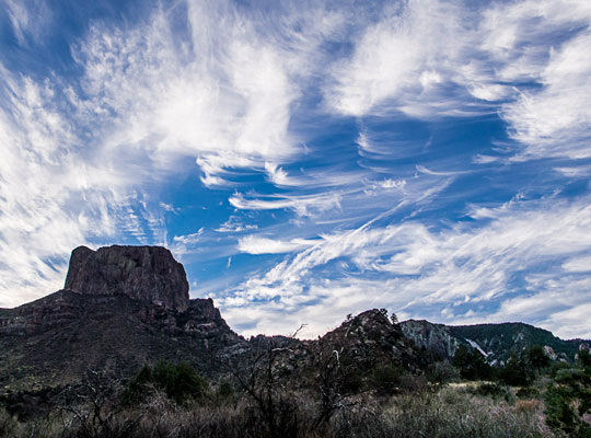 Cirrus clouds that have pulled by the wind in such a way that they resemble horses' tails