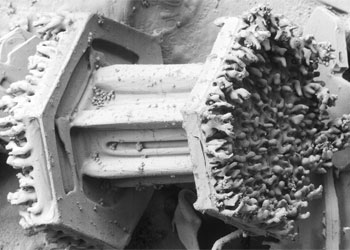 Magnified image of a capped column snowflake