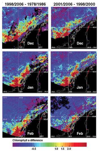 Data images showing decreasing chlorophyll a populations along the Antarctic Peninsula