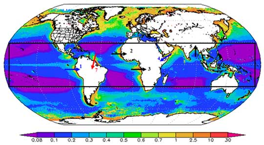 Data image showing global ocean chlorophyll levels
