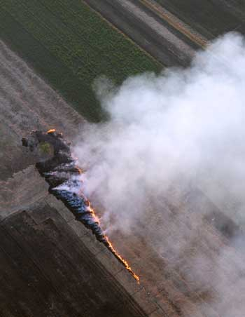 Photograph of smoke produced by agricultural field burning.