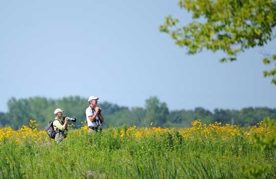 Photograph of bird watchers