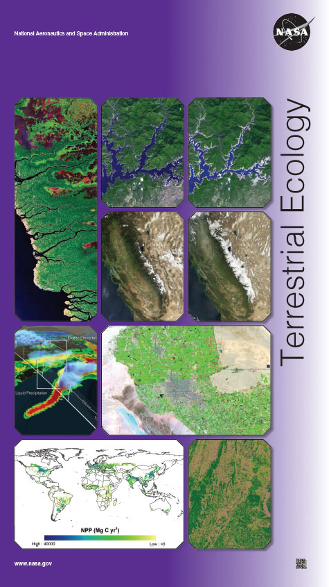Terrestrial Ecology Poster 2015
