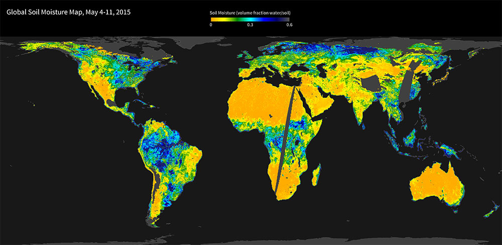 Global SMAP Soil Moisture Map (May 4 - 11, 2015). Image courtesy of NSIDC DAAC