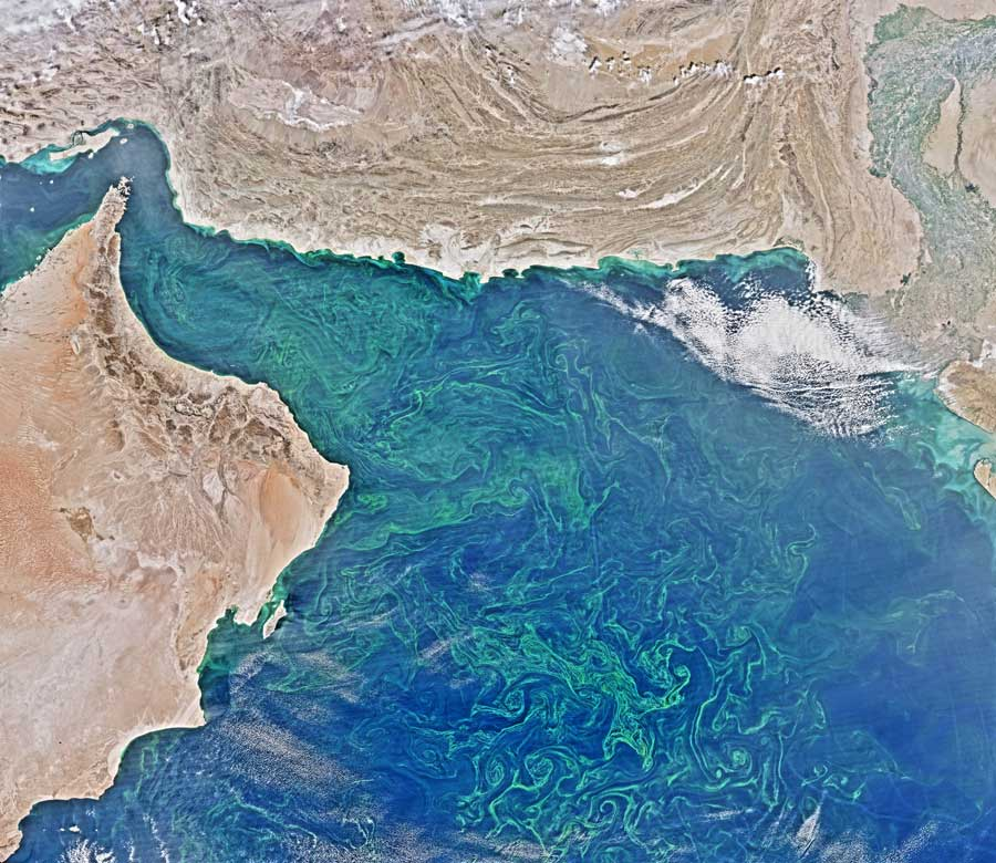 Satellite image showing swirls of plankton in the Arabian Sea