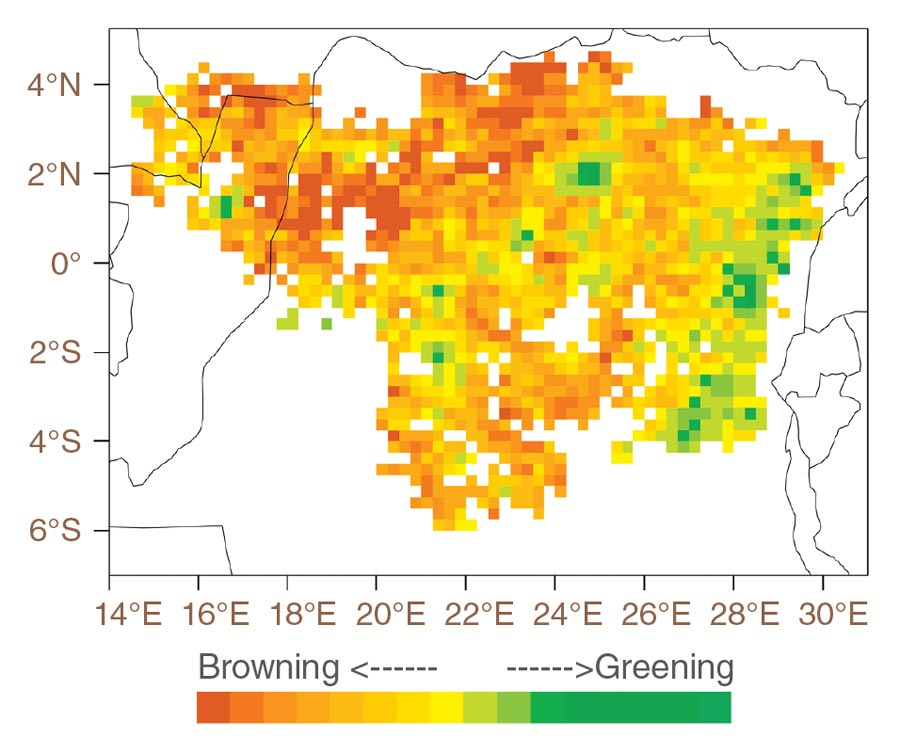 Data image showing Congo forest browning