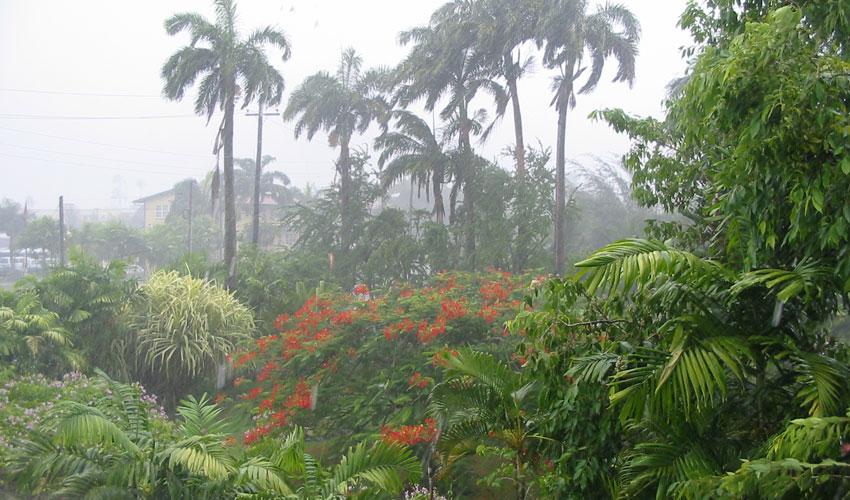 Photograph of rainfall in Guyana