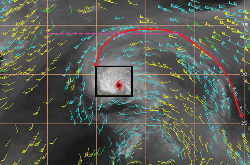 Data image showing motion vectors for Hurricane Nadine
