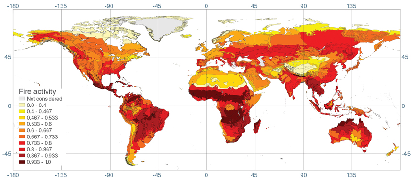 Map of global fire activity