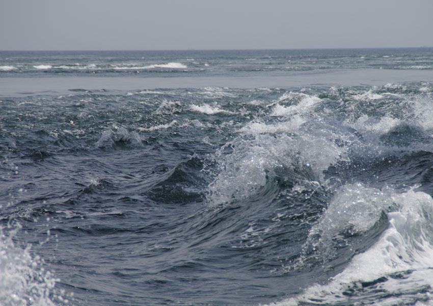 Photograph of the ocean surface