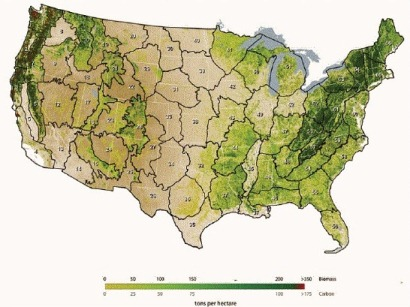 Mosaic image of biomass for conterminous United States. North American Carbon Program (NACP) Aboveground Biomass and Carbon Baseline Data.