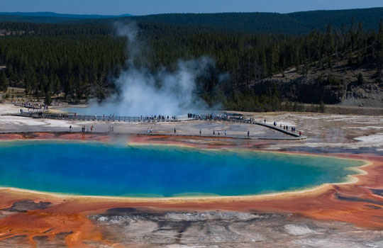 Thermophilic bacteria give Grand Prismatic Spring in Yellowstone National Park its many hues. (Courtesy A. Mancia)