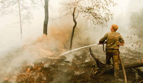 Photograph of a ground fire near the Moscow Region, Russia
